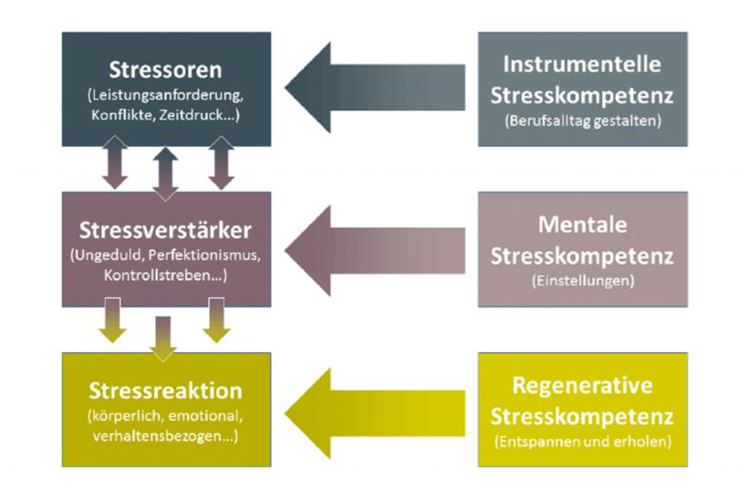 kaluza_stresskompetenzen